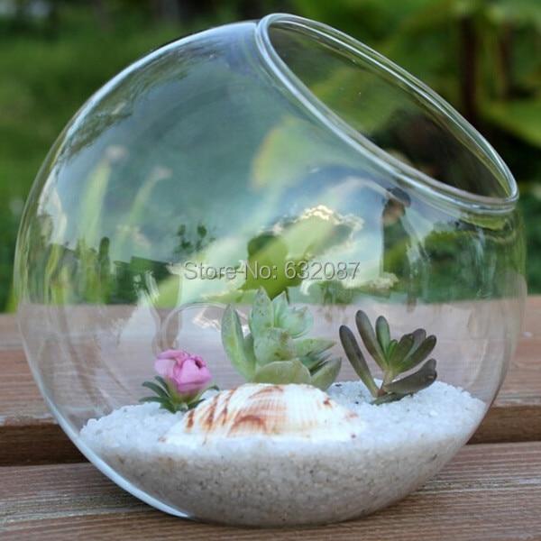 Free Shipping Different Size Oblique Mouth Glass Terrarium Vase Diameter =  8cm 10cm 12cm 15cm Home - Popular Glass Terrarium Globes-Buy Cheap Glass Terrarium Globes