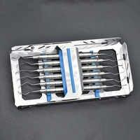 6 piezas cálculo Dental Scaler Ttains cálculo quitar herramienta removedor de diente manchas tártara herramienta escala instrumento equipo de laboratorio Dental