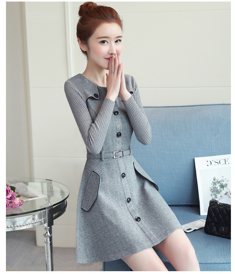 winter new round collar single-breasted cloth dress belt buttons A word women dresses Korean fashion outfit lady vogue vestido 30