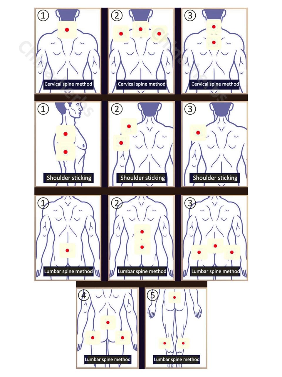 80pcs ZB Arthritis бұлшық еттерінің - Денсаулық сақтау - фото 5