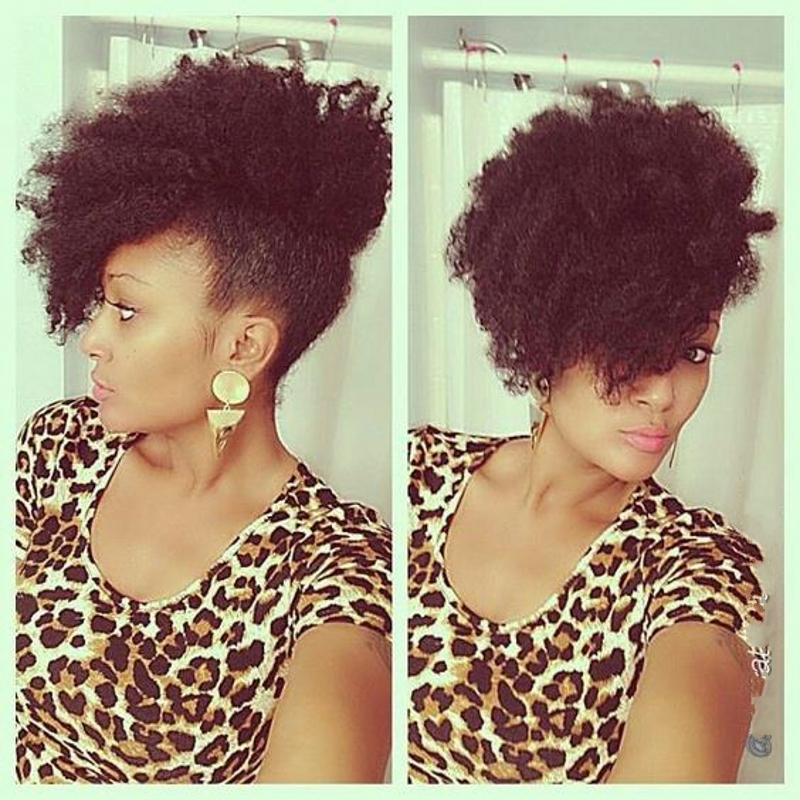 Cantu Natural Hair Styles