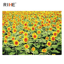 RIHE Sunflowers Field Diy Painting By Numbers Oil On Canvas Hand Painted Cuadros Decoracion Acrylic Paint Home Decor