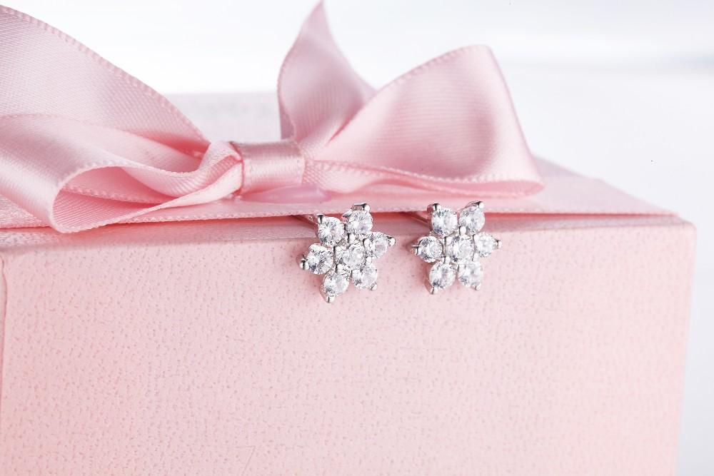for 925 earrings,for silver 925 earring,for sterling silver 925 earrings,for silver 925 earrings for women stud earringsNE14120A (5)