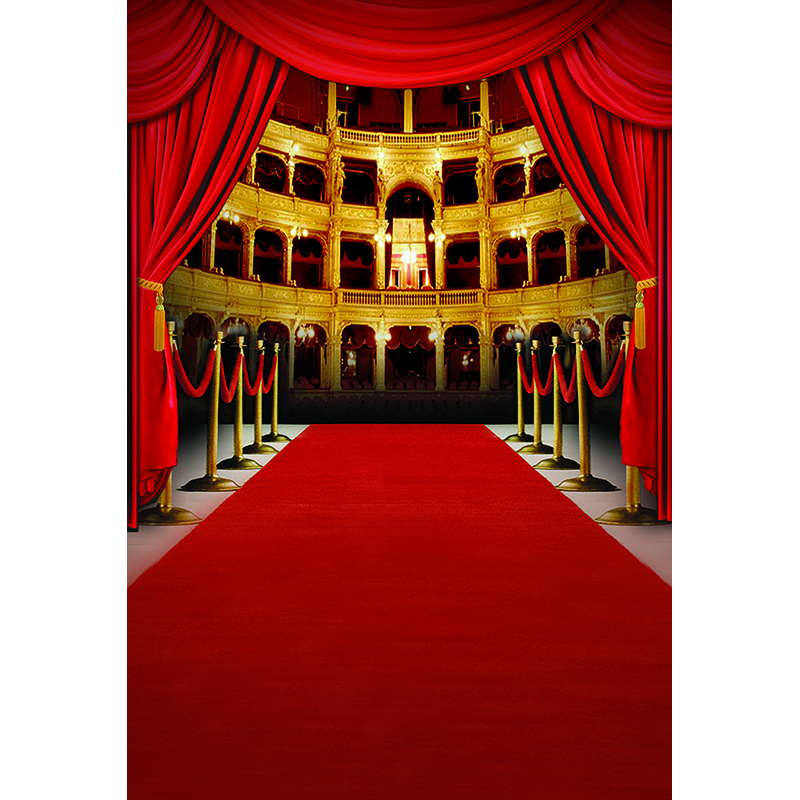 US $8 37 38% OFF|Mehofoto Red Carpet Backdrops Palace Photography  Backgrounds for Photo Studio Children Backdrop CM 4064-in Background from  Consumer