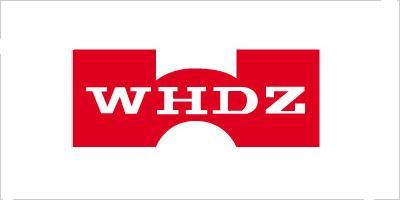 Лого бренда WHDZ из Китая