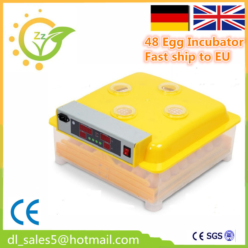 Hot Sale China Mini 48 Egg Incubator For Chicken Duck Goose Quail Birds Automatically Turn Eggs 15 19 25 37 heads droplight clear bubble ball goose egg birds eggs duck egg double deck glass ball transparent pendant light