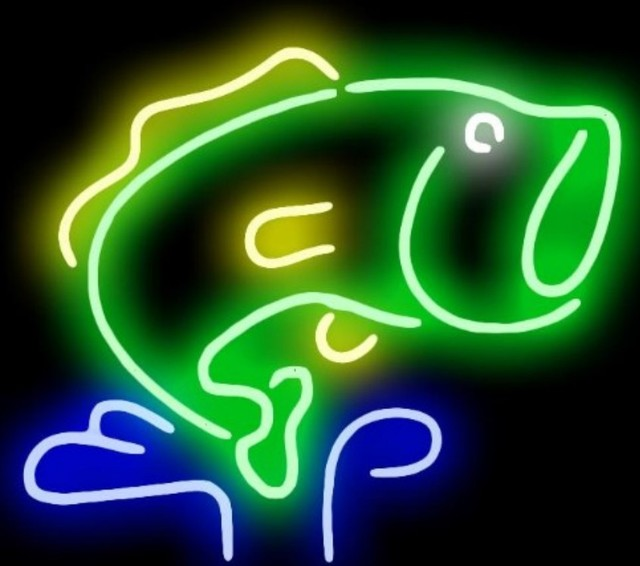 Custom Fish Glass Neon Light Sign Beer Bar