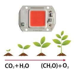 10 шт./лот Светодиодная лампа для выращивания cob Чип 220 В/110 в 30 Вт 50 Вт полный спектр для цветочных овощей фруктов теплицы растений роста свет ч...