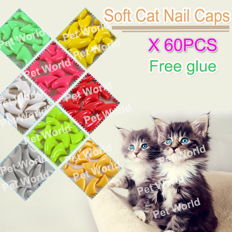 New  60pcs Cat Soft Nail Caps Paw Claws For Pet Cat With Instruction & 3x Free Super Glues And Applicator