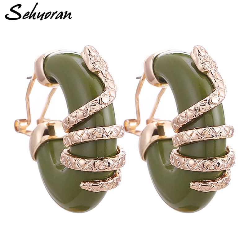 Sehuoran European And American Oorbellen Resin Earrings For Women Snake Pendientes Stud Earrings Women Earrings Wholesale image