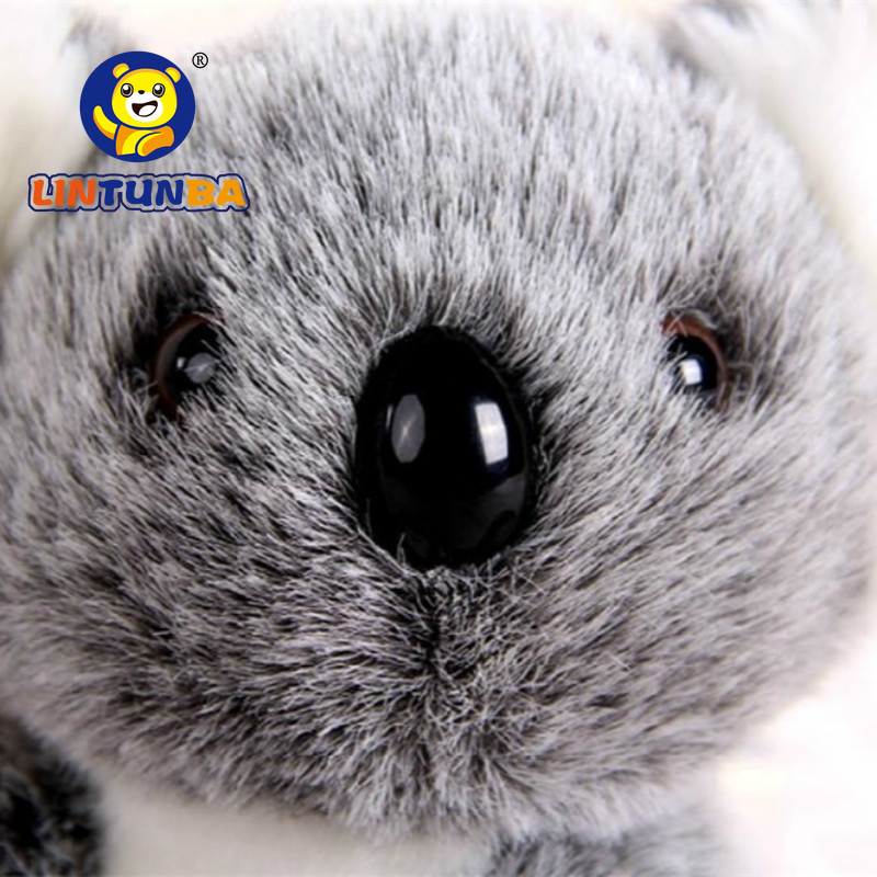 Koala Bear Plush Toy 2