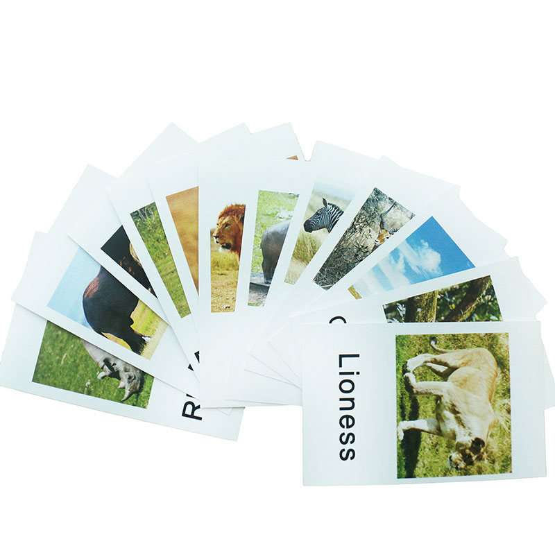 Forest Animal Themed Flash Cards Montessori Educational Materials For 3 Years Old Language Learning Activity Cards
