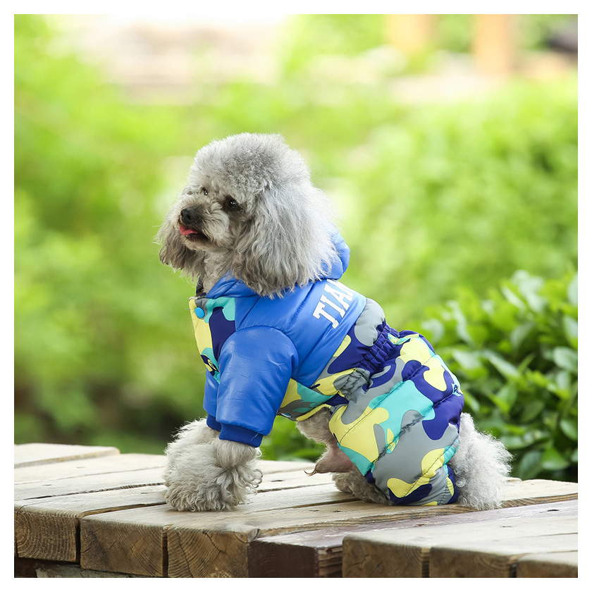 dog clothes 307