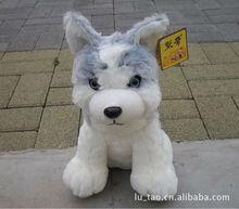 big lovely plush sitting husky dog toy high quality husky dog doll about 45cm