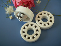 Full Ceramic Bearing 1206 ZrO2 30x62x16 Mm Self Aligning Ball Bearings Non Magnetic Insulating PTFE Cage