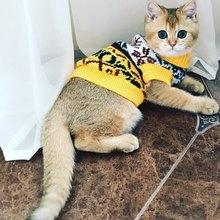 Cat's Sweaters