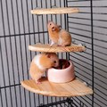 1 Pcs Wooden Coin Parrot Bird hamster Cage Perches Stand Platform 2 Size Pet Budgie Hanging Toy