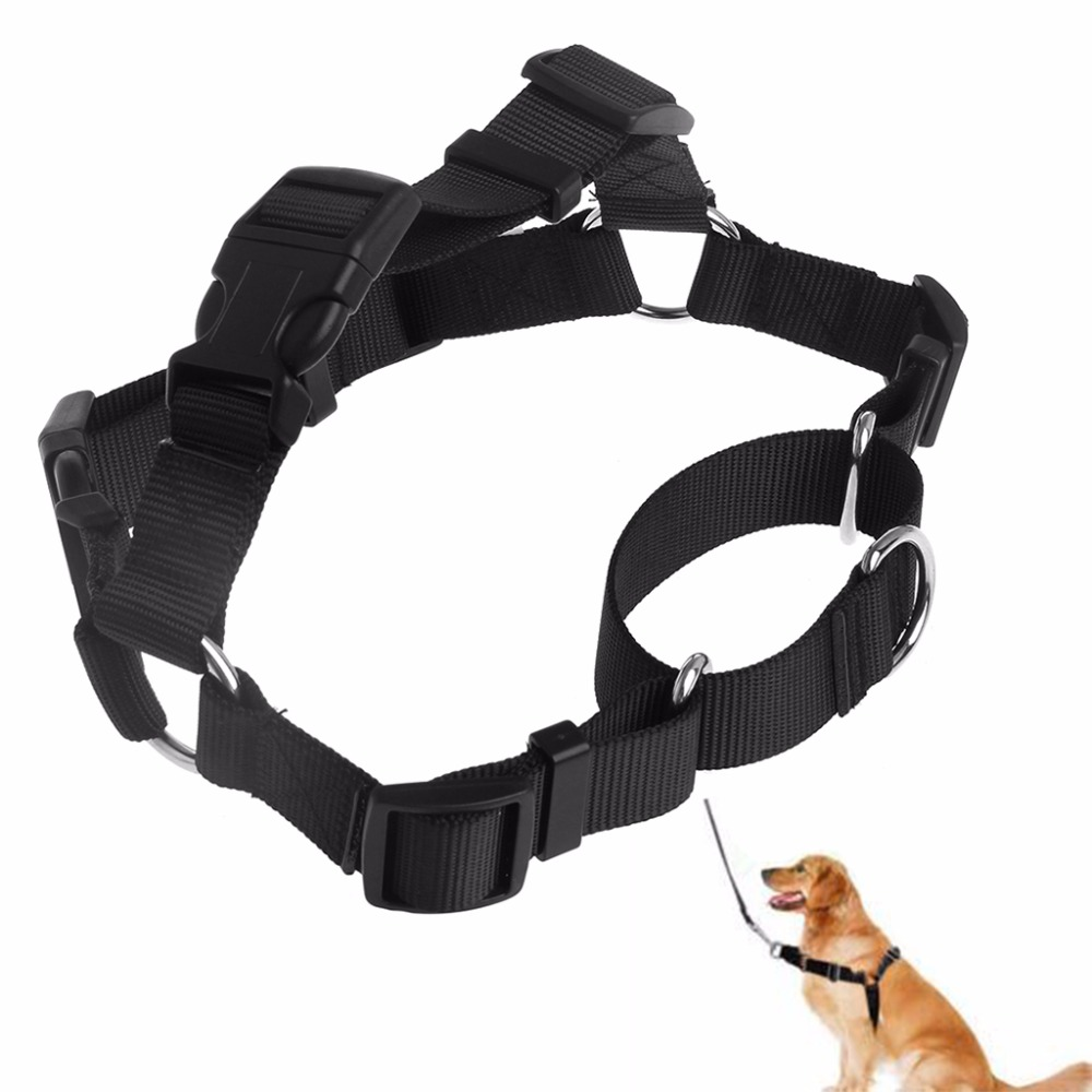 Pet Safe Easy Walk Dog Harness Medium Comfortable And Stylish Lead Leash