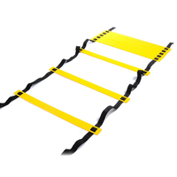 12 Rung 6M Football Training Speed Agility Ladder Black Straps Training Ladder Step Soccer Accessories