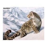 Новая мозаика все diamond Картины Вышивка Животные diamond каменный крест Животные квадратный алмаз Картины Snow Leopard bas247