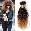 Barato Virgem Ombre tecer cabelo encaracolado 1 pc cabelo virgem Malaio Profunda encaracolado extensões de cabelo Humano 3 tom de cor profunda onda