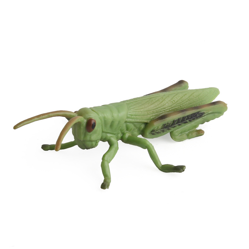 Grasshopper Simulation Insects Model Animal Ornaments Pvc