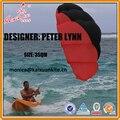 Cometa Peterlynn Quad Línea de Tracción Nueva de una piel, elevador, piloto cometa de kaixuan kite fábrica