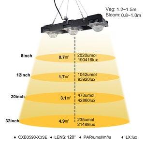 Image 5 - 크리 어 CXB3590 COB LED 성장 빛 전체 스펙트럼 200W 300W 시민 LED 식물 실내 텐트 온실에 대 한 램프를 성장 수경 식물