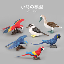 Toys & hobbies anime dolls figure parrot plastic animals action toys set educational for children boys