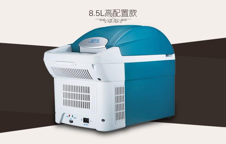 Mini Kühlschrank Kosmetik : L auto kühlschrank v auto nach hause dual use mini