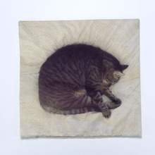 Sleeping Cat Cushion Cover