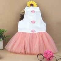 New Arrived Cute Pet Dog Wedding Dress Party Dress Fashion Leisure Priness Dress Bubble Skirt