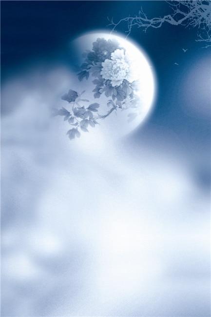 생명의 매직 박스 보름달 150x200cm 사용자 정의 사진 배경 초상화 배경 N10460