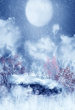 Laeacco Painting Mooon Snowing Night Scene Children Photographic Backgrounds Customized Photography Backdrops For Photo Studio