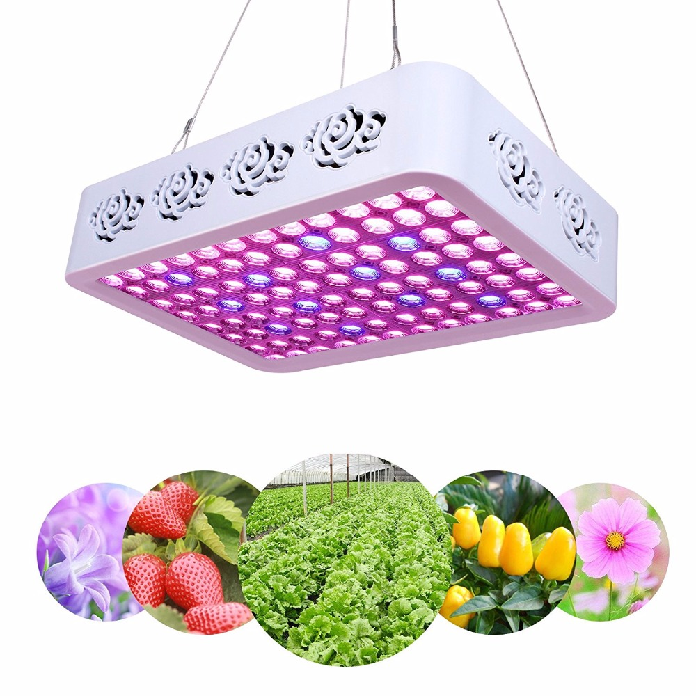 Indoor Plant Growth LED Grow Light Full Spectrum 300W Reflector LED Grow Lamp with Heatproof Casing for Greenhouse Hydroponic best full spectrum 300w led cultivate light for hydroponics greenhouse grow tent led lamp suitable for all plant growth 85v 265v