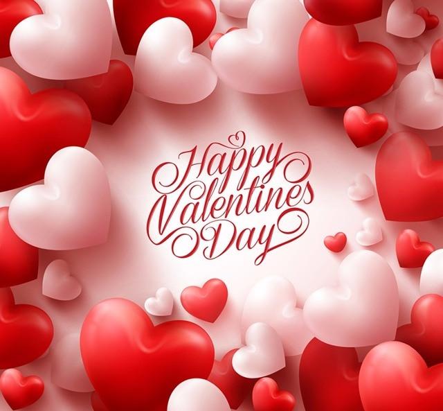 Shanny Vinyl Custom Photography Backdrops Prop Valentine S Day Theme