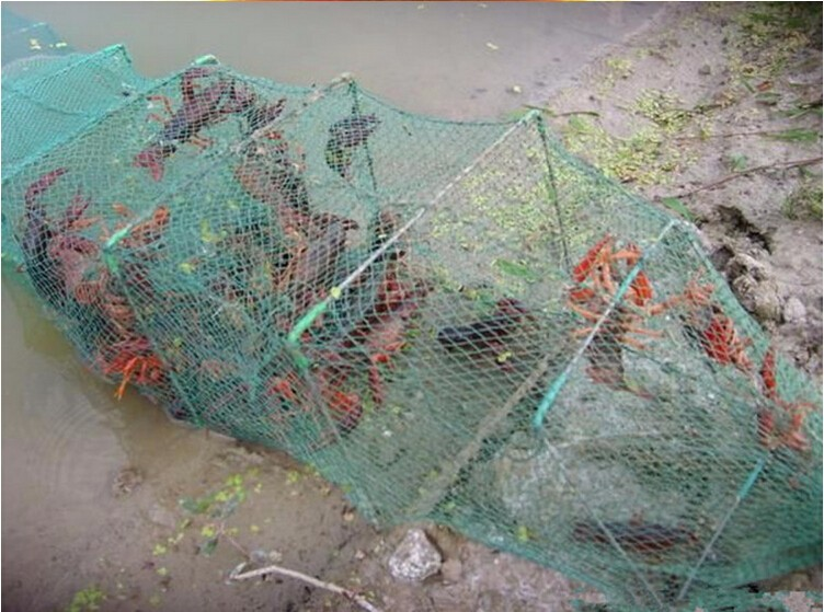 High Quality fish cage