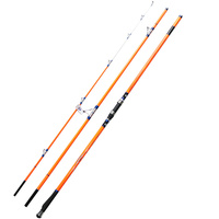 Cindy Surfcasting Rod FUJI Top Ring 3 Section 4 2m CW100G 250G Hybrid Tip High Carbon