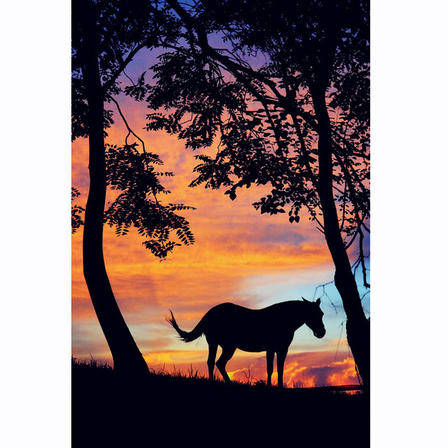 eb1e564e735 100% Full Square 5D Diy Daimond Painting Cross-stitch Horse 3D Diamond  Painting Round Rhinestones Sunset Paintings Embroidery