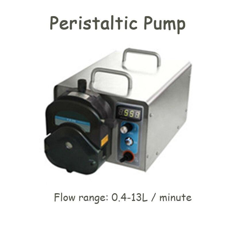 Pompe péristaltique industrielle de contrôle de vitesse d'acier inoxydable de pompe péristaltique avec le moteur sans brosse WG600S