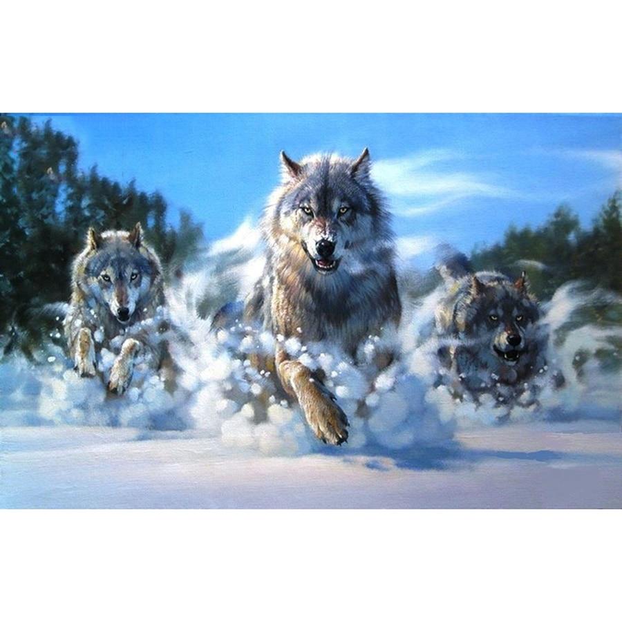 5D diy Алмазная картина, картина из страз, холст, Алмазная мозаика, вышивка животных, снег, волк, ремесло, домашний декор ST220