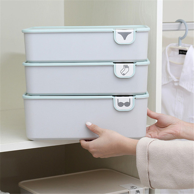Underwear Storage Box With Covered Home Closet Organizer Drawer Divider Plastic Boxes Socks Panties Bra Storage Organizer