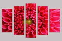 Limited 5pcs Pictures About Big Red Flower Oil Painting On Canvas Home Decor Modern Drawing Living
