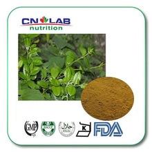 Gymnema sylvestre / gymnema sylvestre schult / Meshashringi Extract  25 % gymnemique acid 100g