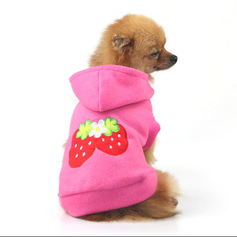 Chiwawa Clothes Promotion-Shop for Promotional Chiwawa ...
