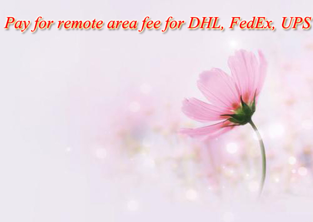 Pay for remote area fee for DHL, FedEx, UPS
