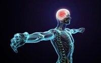 تشكل 4 أحجام الجسم الدماغ البشري المجرد المنزل الديكور قماش المشارك طباعة