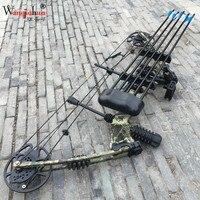 Professional блочный шкив лук и комплекты стрел 30 70 фунтов Регулируемый лук Охота Спорт на открытом воздухе Охота стрельба
