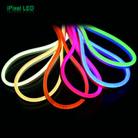 DC12V&DC24V Silicon digital flex led neon strip light 60pcs SMD5050 LED RGB & WS2811 IC