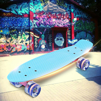 22 Inches Skate Board Banana Style Mini Cruiser Long Board Pastel Color Adult Child Fish Skateboard with LED Flashing Wheels